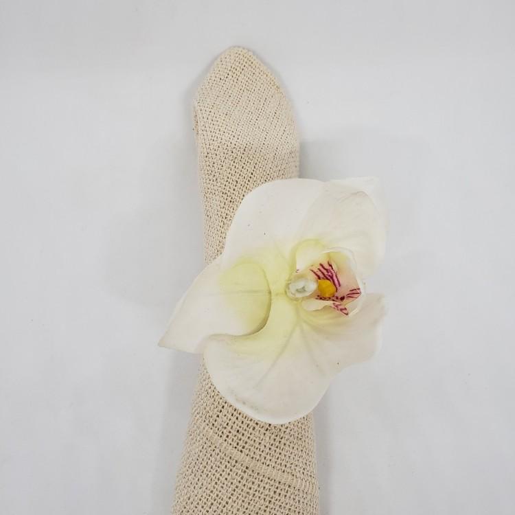 Argola orquídea - Imagem: 5