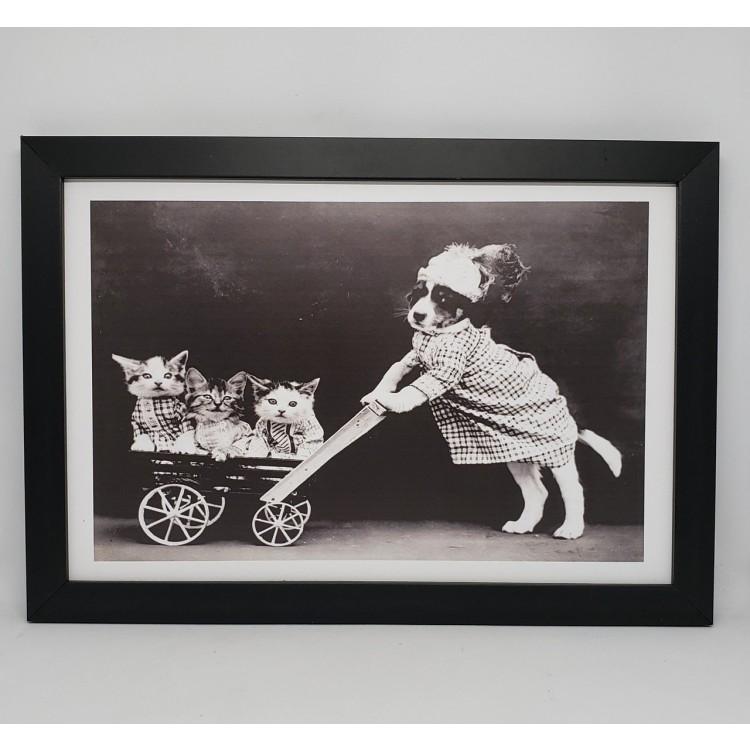 Quadro gatos e cão - Imagem: 1