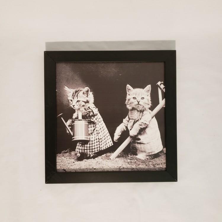 Quadro dois gatinhos - Imagem: 1
