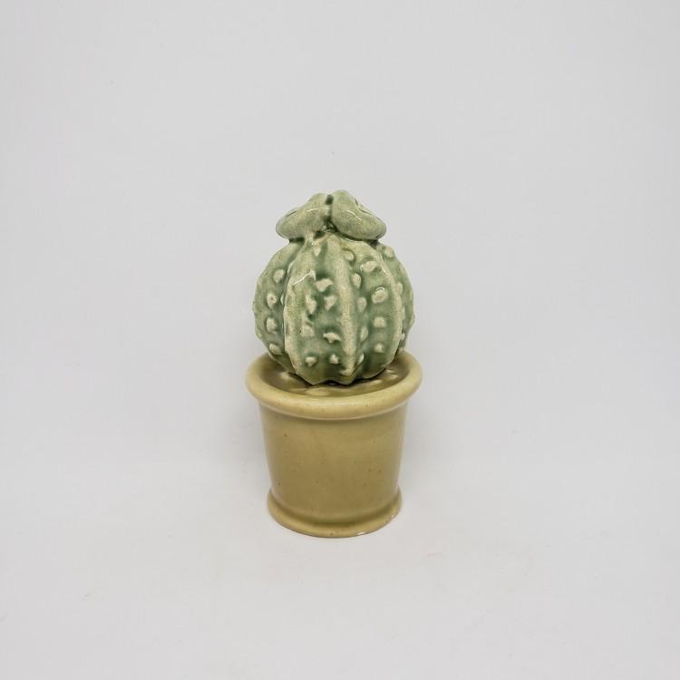 Cactos em cerâmica - Imagem: 1