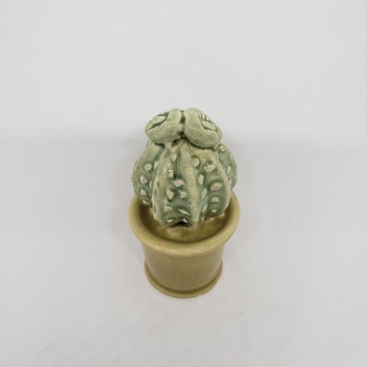 Cactos em cerâmica - Imagem: 2