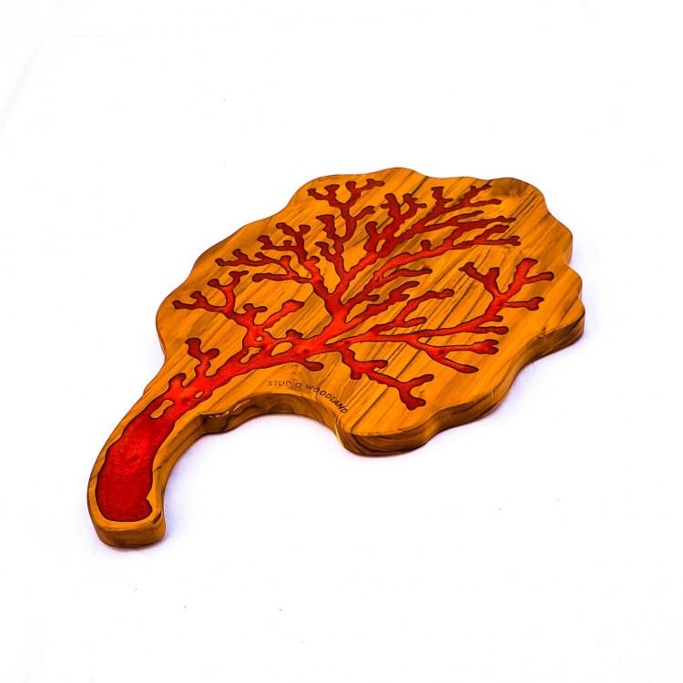 tábua coral vermelho - Imagem: 3