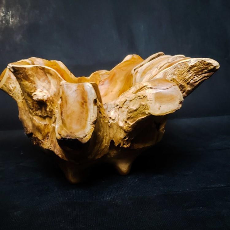 Escultura naturale G1 - Imagem: 3